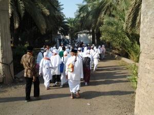 Kebun Kurma di Madinah